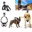 Popruh na psa s držákem GoPro Hero